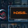Désindexer HDSS.TO & HDS.TO